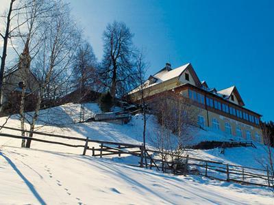 kohlern-winter.jpg